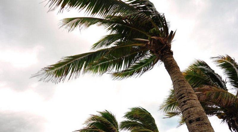Американские церкви начали оказание помощи жертвам урагана «Майкл»