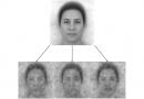 Исследователи составили «фоторобот» Бога, основываясь на представлениях людей