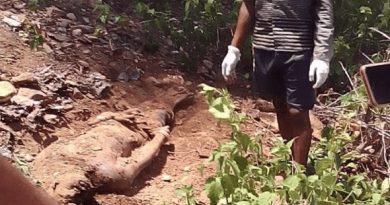 В Индии 16-летний христианин был забит камнями индуистскими националистами